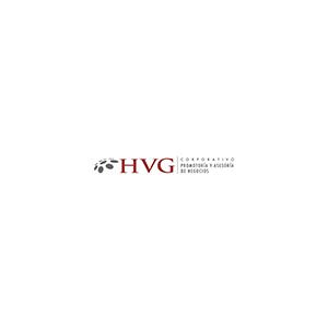 HVG Corporativo, S.C.