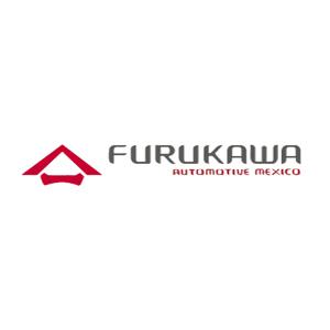 Furukawa México, S.A de C.V.
